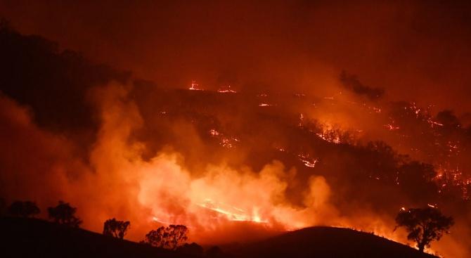Учени зоват Австралия да действа спешно заради горските пожари