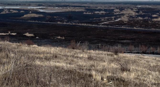 Прокуратурата подхвана пожара в защитената местност Калимок