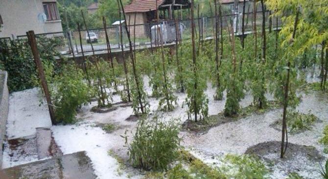 Създаването на гаранционен фонд за покриване на щети от природни