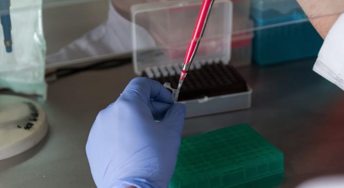 Отрицателна е пробата за новия коронавирус на завърналия се от