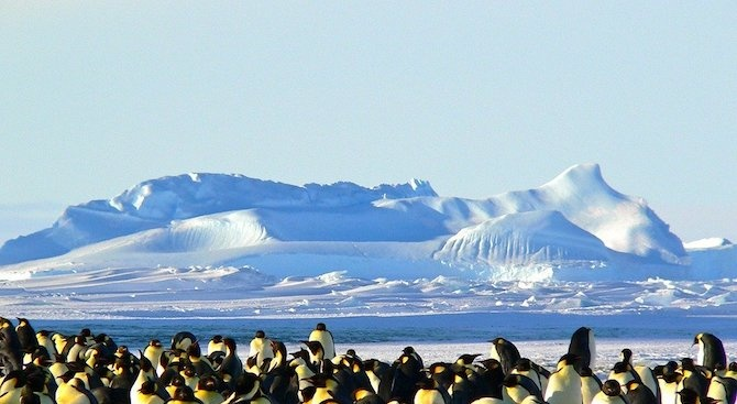 Два температурни рекорда бяха установени на аржентинските научноизследователски станции, разположени