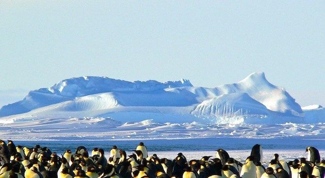 Метеоролози регистрираха рекордно висока температура в Антарктида