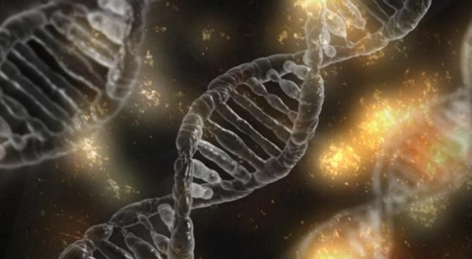 Учени откриха средство за борба с болестта на Алцхаймер и рака