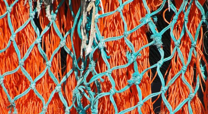 Над 50 кг риба е освободена от бракониерски мрежи в