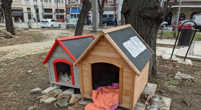 Къщички за бездомни кучета поставиха във варненска градинка