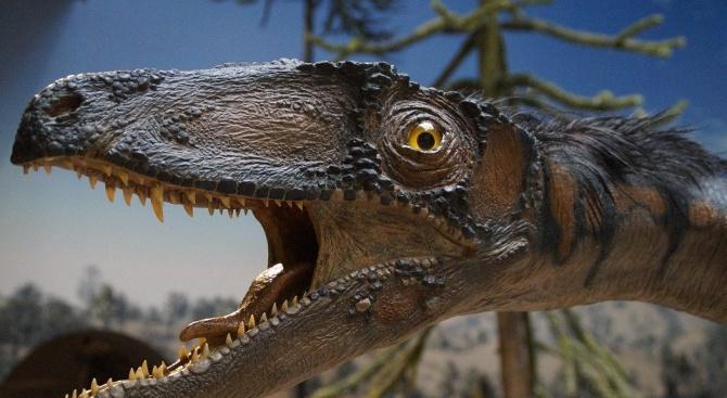 В Аржентина бяха открити останките на нов вид малък динозавър