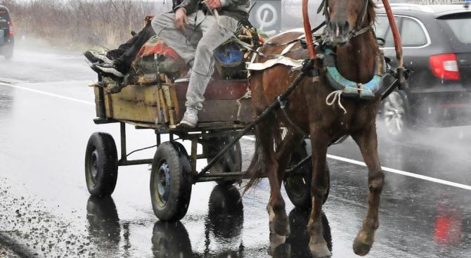 Димитровградски автобус помете каруца