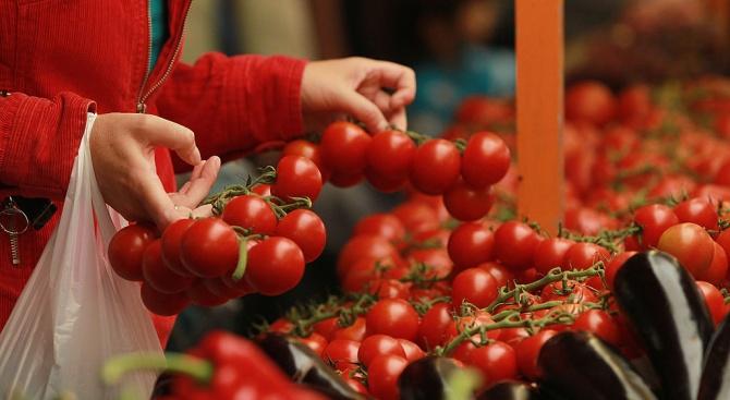Опасен вирус плъзна по доматите