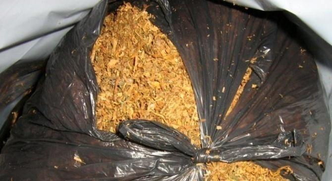 Иззеха контрабанден тютюн в Плевен