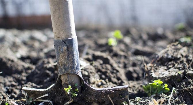 За 5 години: Земеделци са получили 405, 4 милиона лева от фондовете на ЕС