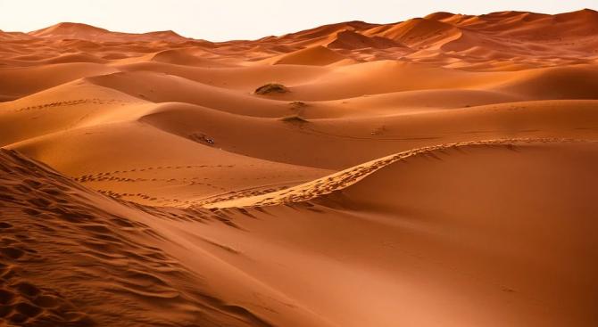 """Пясъчните дюни """"общуват"""" помежду си"""