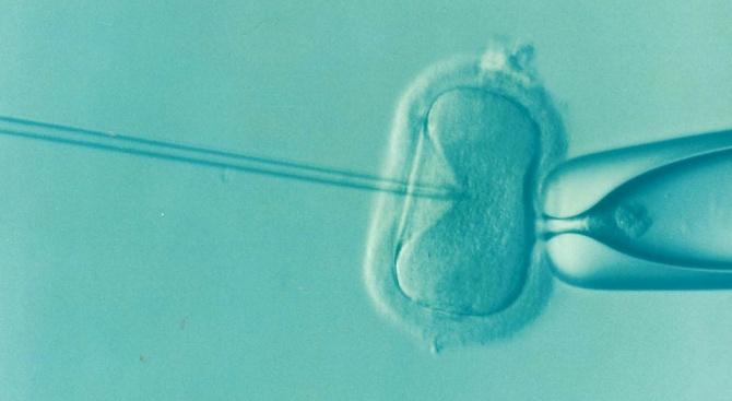 Жена роди благодарение на нова технология за замразяване на неузрели яйцеклетки