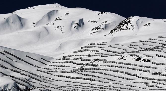 Лавина уби германци в Арктика