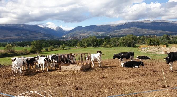 """Фонд """"Земеделие"""" изплати близо 26 млн. лева за агроекология за Кампания 2019 г."""
