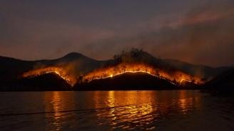 Горските пожари в Австралия допринесоха за откриването на древно оръжие