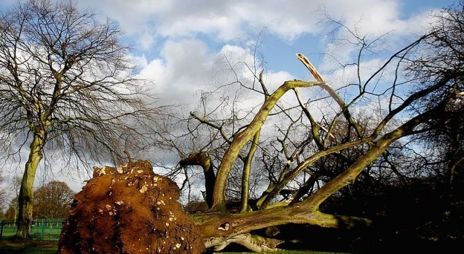 Близо 80 км в час достигнаха поривите на вятъра в Ловеч
