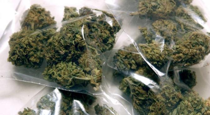 Спипаха млада жена в Монтана с голямо количество наркотици