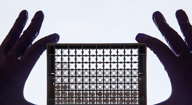 Вирусолог: Коронавирусът и грипът могат да се различат само с лабораторно изследване