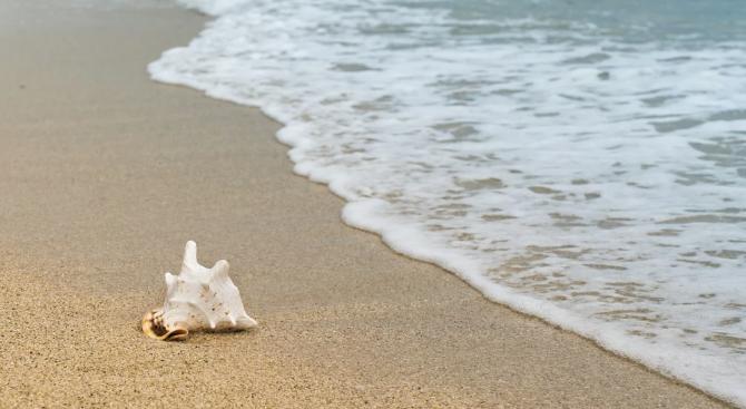 """МС откри процедура за концесия на плаж """"Свети Влас-запад"""""""