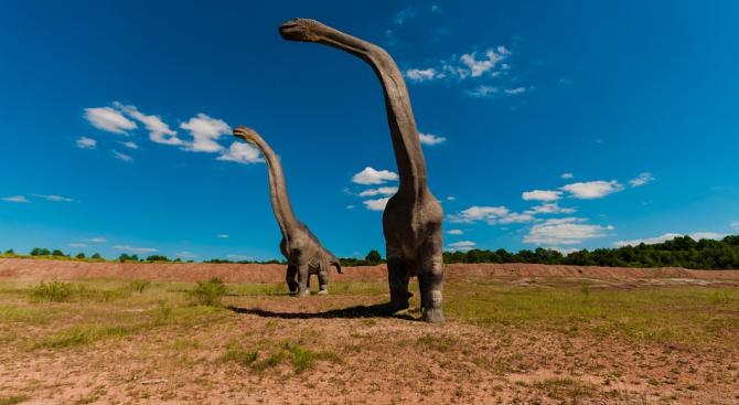 Изчислиха продължителността на денонощието в епохата на динозаврите