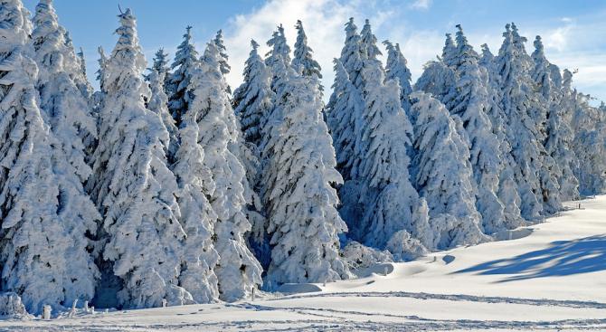 През деня валежите от сняг ще обхванат по-голямата част от