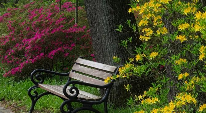 Демонтират пейките от парковете в Бургас