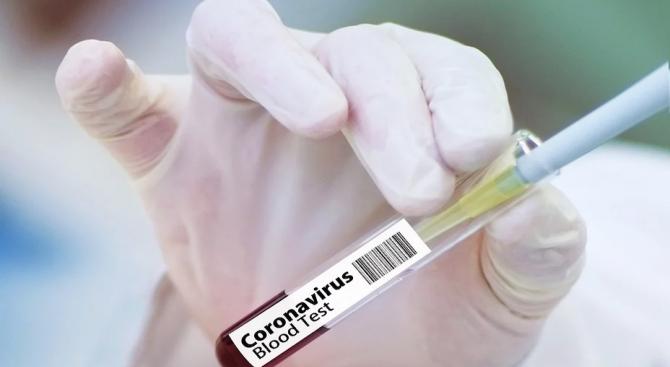 Израел тества прототип на коронавирусна ваксина върху гризачи