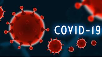 20 нови случая на COVID-19 у нас - общо станаха 399