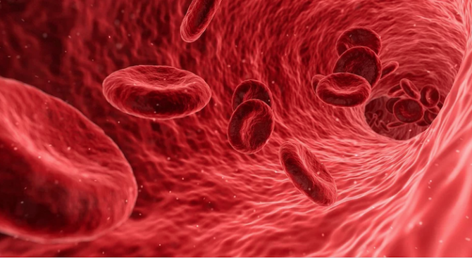 Турция започна да лекува с кръвна плазма заболели от COVID-19