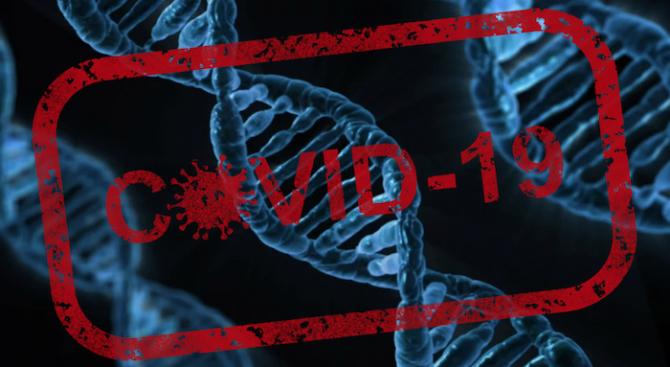 Сериозността на симптомите на COVID-19 се определя от вариации на ген