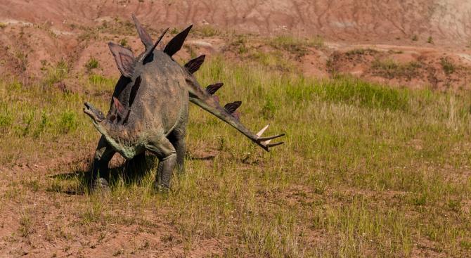 Учени се натъкнаха на ембриони на динозаври отпреди 200 млн. години