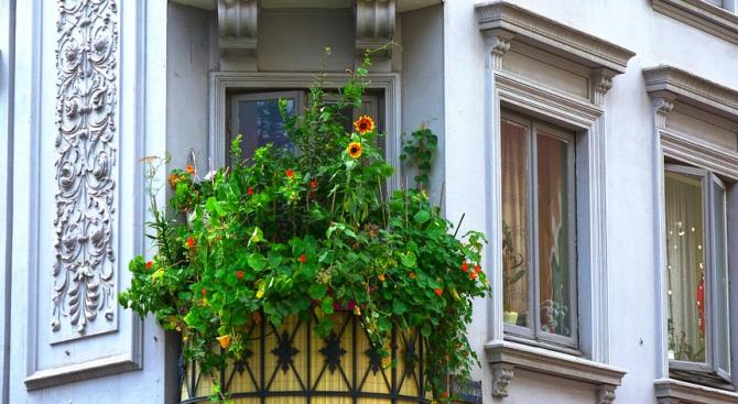 """""""Превърни балкона си в градина"""" е мотото на кампания БАЛКONA,"""