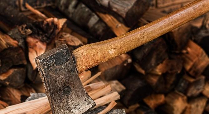 Два акта са съставили служители от Регионалната дирекция по горите