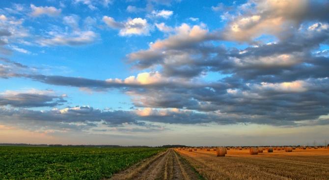 Допълнителни близо 140 млн. лева за земеделските стопани по две схеми