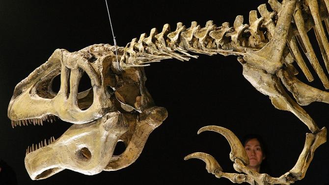 Откриха останки от мегараптор в Аржентина
