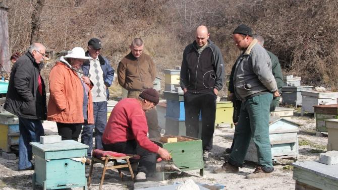 """Пчелари и природозащитници организираха мълчаливо бдение """"Да спасим живота на пчелите"""" в Плевен"""