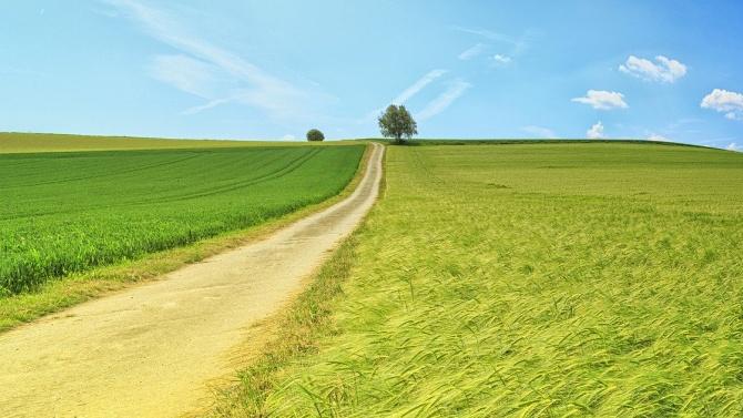 Важна промяна в програмата за селските райони за България разреши Брюксел