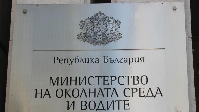 Славея Стоянова днес ще седне на стола на арестуваниязаместник-министър на