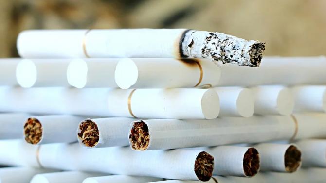 Биолози от САЩ установиха, че никотинът по особен начин влияе