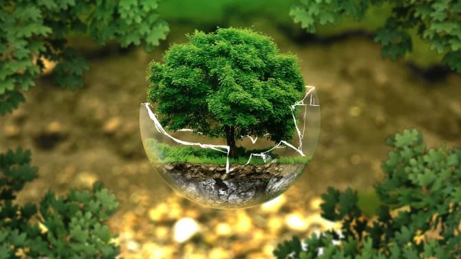Нова климатична инициатива на ООН на Световния ден за опазване на околната среда