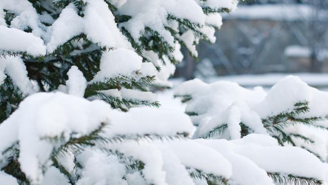 Екипи със снегопочистваща техника се борят със седемметрова снежна покривка,