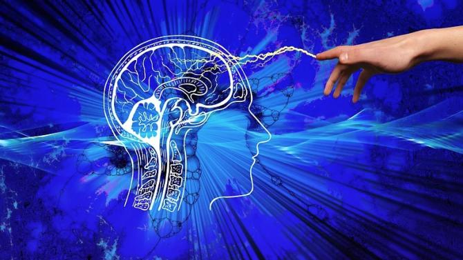 Човешкият мозък не е способен да възприема света обективно