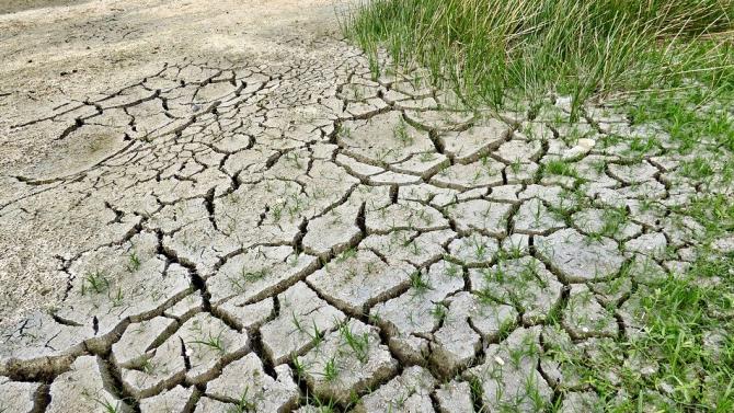 Масовото изчезване на видове преди 450 млн. години може да се дължи на глобално затопляне
