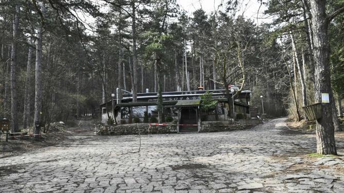 Тридесетметрова пешеходна дървена скара беше изградена по един от основните