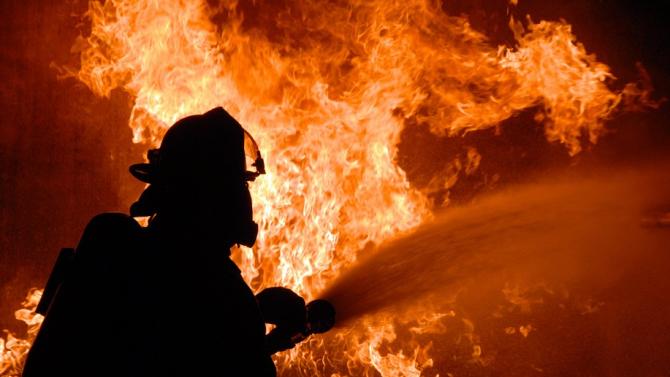 Кози и птици са изгорели при пожар в атоновското село
