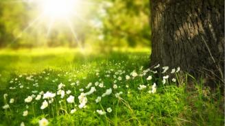 Остава слънчево и топло, следобед може да превали и прегърми