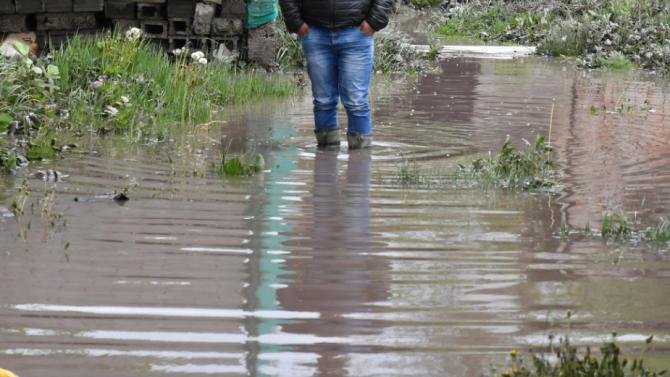 """Част от дигата на отводнителен канал """"Дели арк"""" в землището"""
