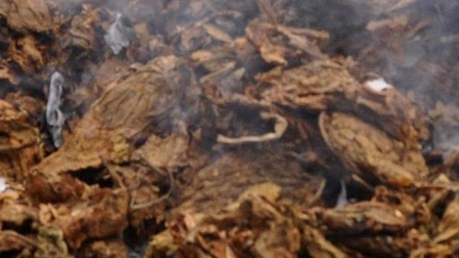 10 килограма нелегален тютюн са иззети при операция в Сливен