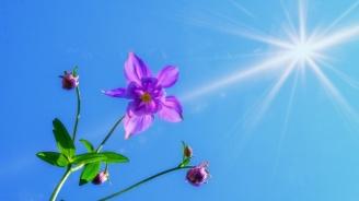 Времето днес остава предимно слънчево