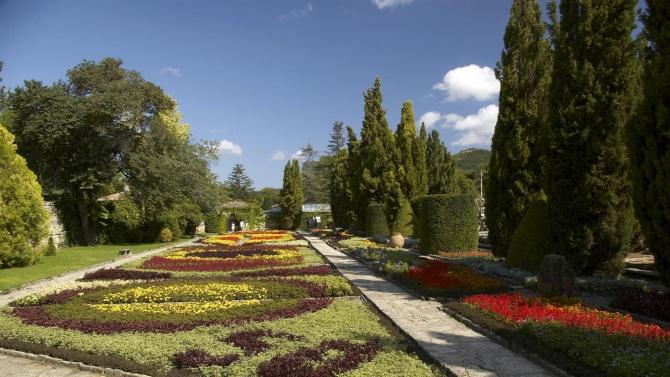 Университетската градина в Балчик дарява на 65-ия си рожден ден на всеки посетител цвете